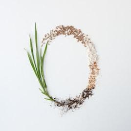 Organic Flours